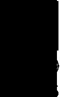 ci-pro-logo.png
