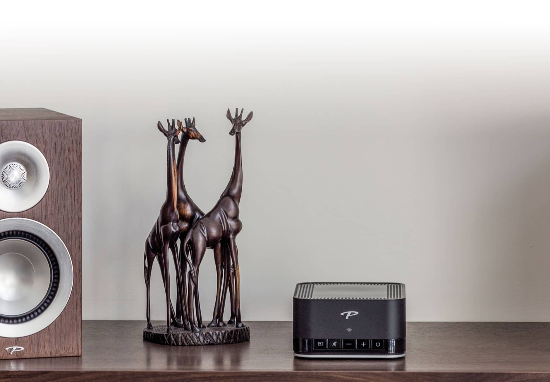 Paradigm® | Premium Wireless Series | PW AMP | Overview